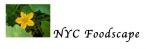 May 23, Creating Community Gardens for Residents Webinar